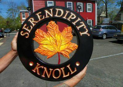 Serendipity Knoll